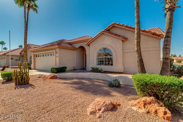 1569 E Torrey Pines Lane, Chandler, AZ 85249 (MLS #6232657) :: My Home Group