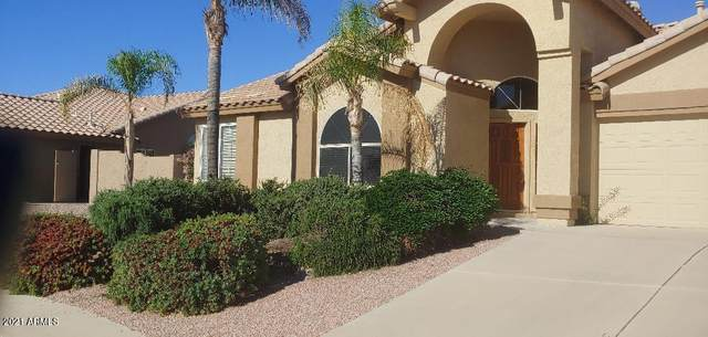 19920 N 86TH Avenue, Peoria, AZ 85382 (MLS #6232667) :: The Property Partners at eXp Realty
