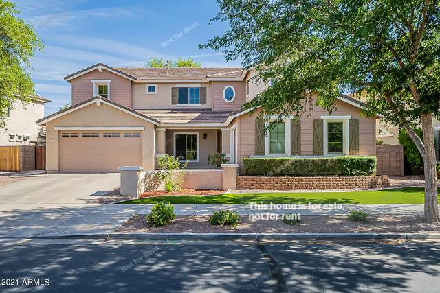 18947 E Oriole Way, Queen Creek, AZ 85142 (MLS #6232704) :: Yost Realty Group at RE/MAX Casa Grande