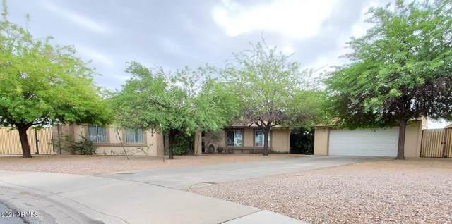 2259 W Pampa Avenue, Mesa, AZ 85202 (MLS #6232727) :: The Riddle Group
