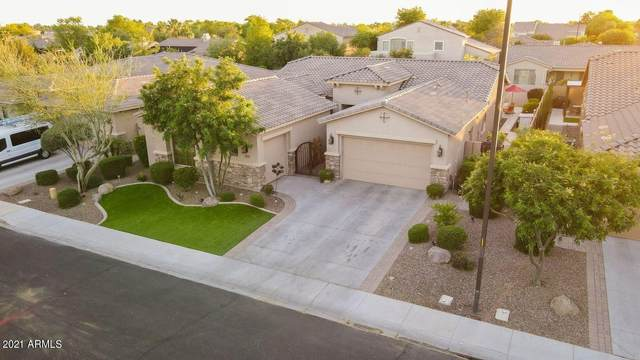 5070 S Pinaleno Place, Chandler, AZ 85249 (MLS #6232736) :: My Home Group