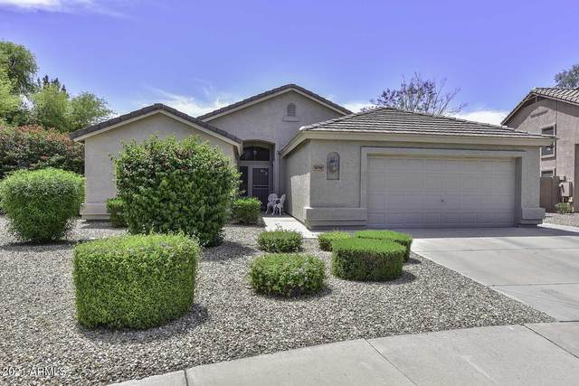 6751 W Firebird Drive, Glendale, AZ 85308 (MLS #6232753) :: My Home Group