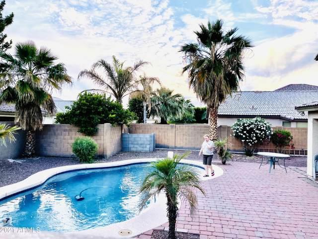 10505 W Edgemont Drive, Avondale, AZ 85392 (MLS #6232759) :: Hurtado Homes Group
