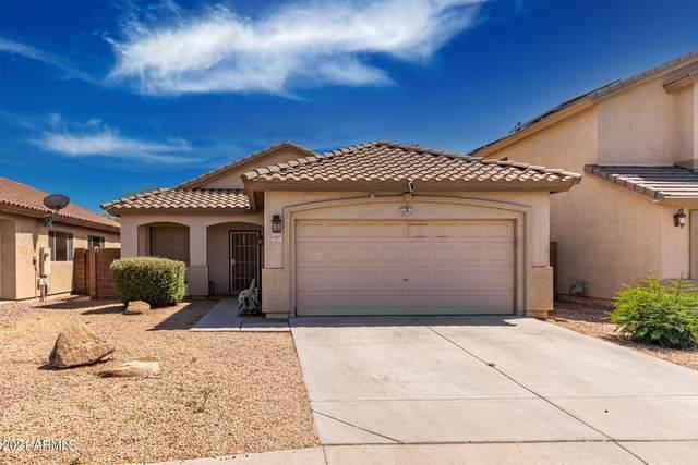 11217 W Berkeley Road, Avondale, AZ 85392 (MLS #6232801) :: Yost Realty Group at RE/MAX Casa Grande