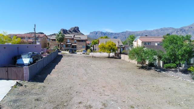 9864 E Fortuna Avenue, Gold Canyon, AZ 85118 (MLS #6232820) :: Service First Realty