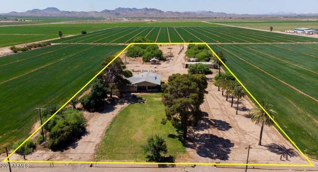 23731 W Mc 85, Buckeye, AZ 85326 (MLS #6232825) :: Yost Realty Group at RE/MAX Casa Grande