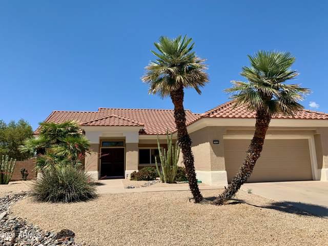 15628 W Sentinel Drive, Sun City West, AZ 85375 (MLS #6232864) :: Howe Realty
