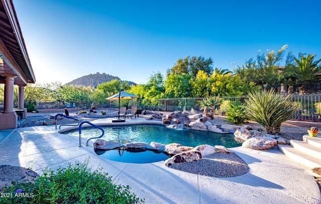 11710 E Desert Vista Drive, Scottsdale, AZ 85255 (MLS #6232885) :: Balboa Realty