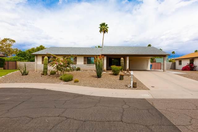 12417 N 37TH Place, Phoenix, AZ 85032 (MLS #6232891) :: Yost Realty Group at RE/MAX Casa Grande