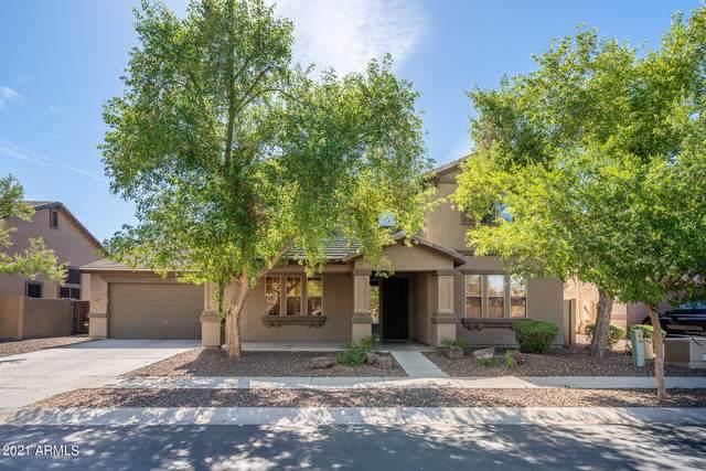 12008 N 144TH Avenue, Surprise, AZ 85379 (MLS #6232904) :: My Home Group