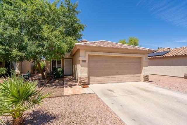 11930 W Bloomfield Road, El Mirage, AZ 85335 (MLS #6232939) :: Yost Realty Group at RE/MAX Casa Grande