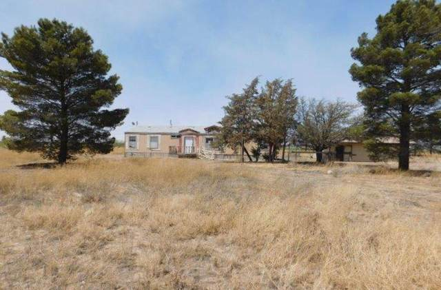 4332 E Shelby Place, Willcox, AZ 85643 (MLS #6232995) :: The Ellens Team