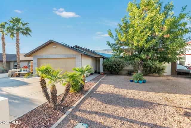 310 W Mohawk Drive, Phoenix, AZ 85027 (MLS #6233016) :: The Riddle Group