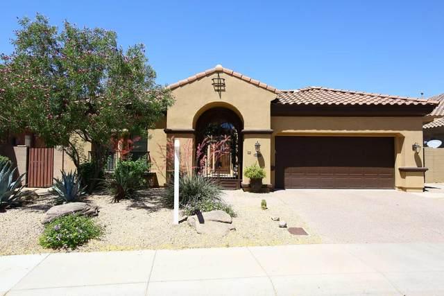 22012 N 36TH Street N, Phoenix, AZ 85050 (MLS #6233034) :: Yost Realty Group at RE/MAX Casa Grande