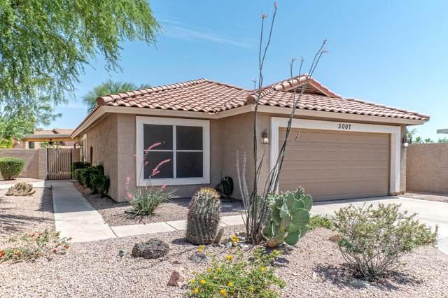 3007 E Windmere Drive, Phoenix, AZ 85048 (MLS #6233054) :: My Home Group