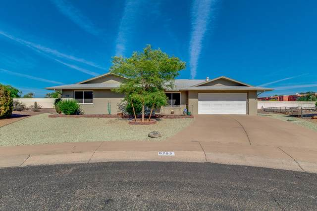 9703 W Forrester Drive, Sun City, AZ 85351 (MLS #6233057) :: My Home Group