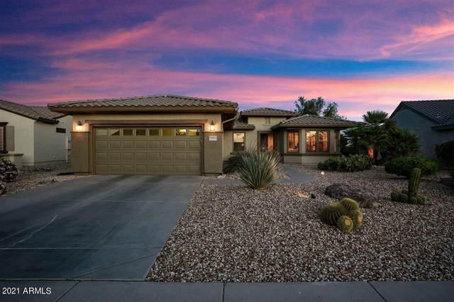 15359 W Skyview Way W, Surprise, AZ 85374 (MLS #6233075) :: Long Realty West Valley