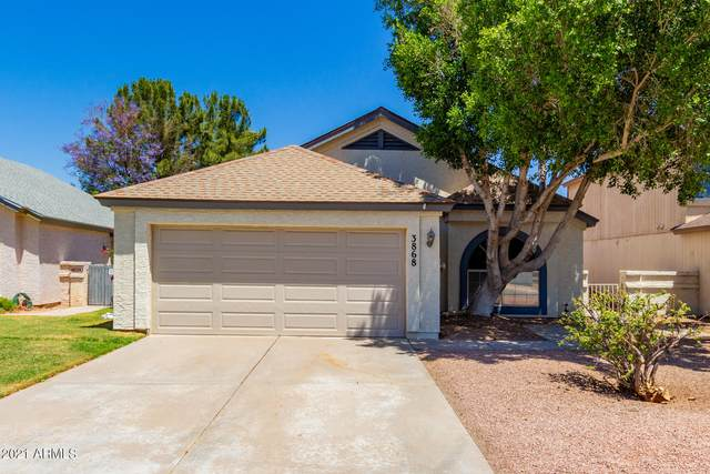 3868 W Butler Street, Chandler, AZ 85226 (MLS #6233088) :: My Home Group