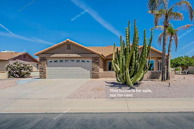 2187 Leisure World, Mesa, AZ 85206 (MLS #6233102) :: The Property Partners at eXp Realty