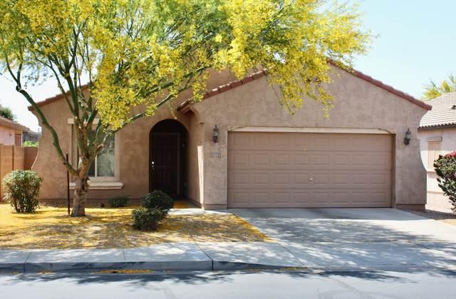 11051 E Serafina Avenue, Mesa, AZ 85212 (MLS #6233111) :: My Home Group