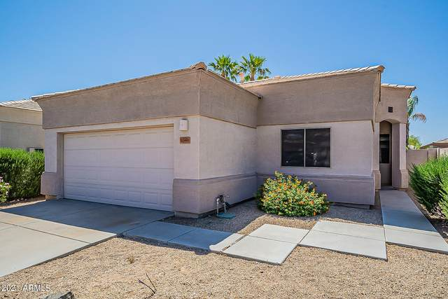 6349 W Blackhawk Drive, Glendale, AZ 85308 (MLS #6233113) :: The Garcia Group