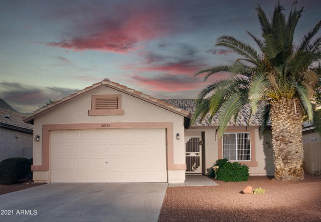 20636 N 103RD Avenue, Peoria, AZ 85382 (MLS #6233122) :: My Home Group