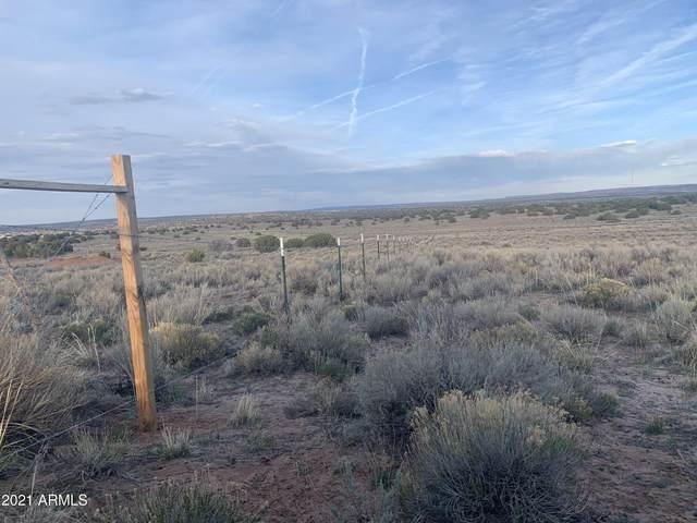 Arizona Park Est. Unit 1 # 720 & 721, Sanders, AZ 86512 (MLS #6233128) :: My Home Group