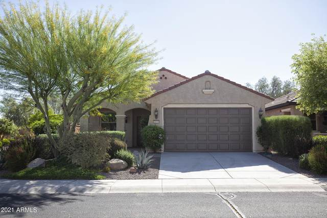 20539 N 267TH Lane, Buckeye, AZ 85396 (MLS #6233143) :: Lucido Agency