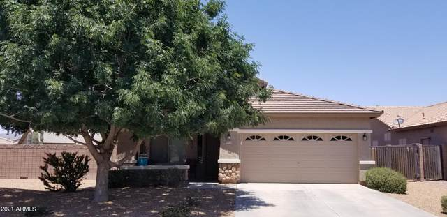 44336 W Desert Plant Trail, Maricopa, AZ 85139 (MLS #6233163) :: The Laughton Team