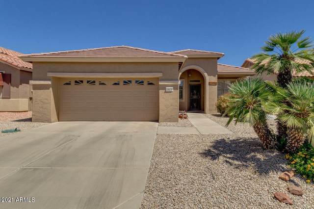 18076 W Udall Drive, Surprise, AZ 85374 (MLS #6233201) :: The Laughton Team