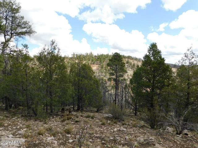 5089 Morning View Drive, Happy Jack, AZ 86024 (MLS #6233223) :: Arizona 1 Real Estate Team