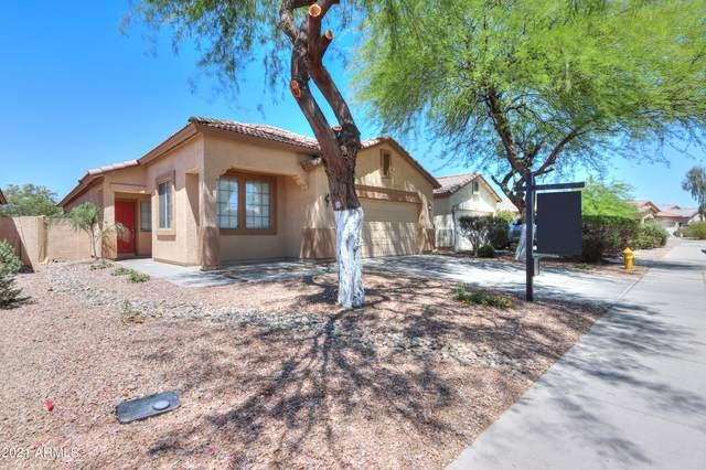 44756 W Portabello Road, Maricopa, AZ 85139 (MLS #6233254) :: Yost Realty Group at RE/MAX Casa Grande