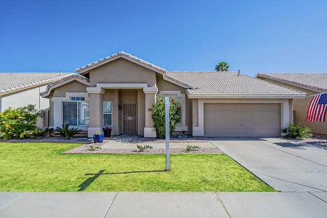 4519 E Danbury Road, Phoenix, AZ 85032 (MLS #6233257) :: Yost Realty Group at RE/MAX Casa Grande