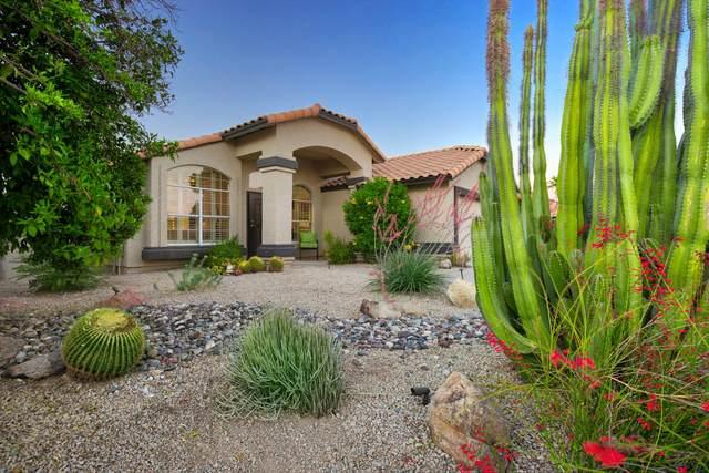 3708 E Rockwood Drive, Phoenix, AZ 85050 (MLS #6233280) :: The Laughton Team