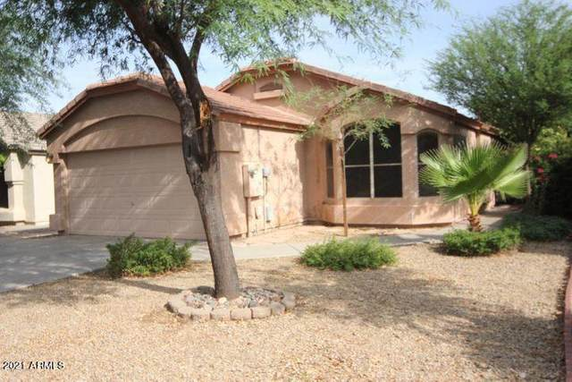 2284 E Pinto Drive, Gilbert, AZ 85296 (MLS #6233306) :: Conway Real Estate