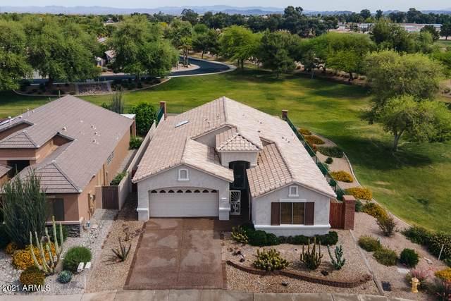 17610 W Hayden Drive, Surprise, AZ 85374 (MLS #6233330) :: The Garcia Group
