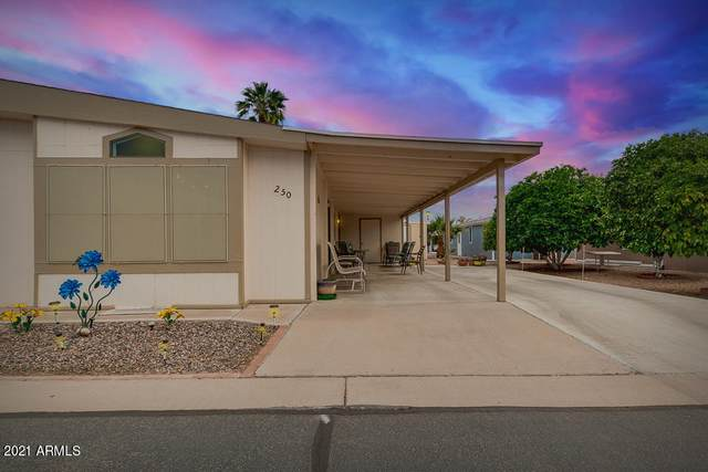 5735 E Mcdowell Road #250, Mesa, AZ 85215 (MLS #6233334) :: The Carin Nguyen Team