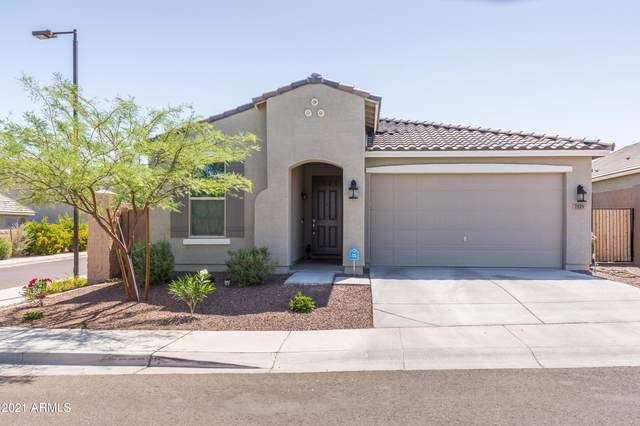 7819 S 23RD Place, Phoenix, AZ 85042 (MLS #6233368) :: Yost Realty Group at RE/MAX Casa Grande