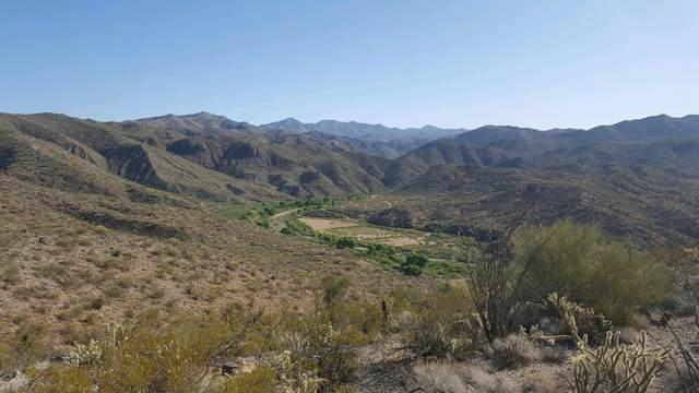 9875 S Upper Trout Creek Road, Kingman, AZ 86401 (MLS #6233385) :: Arizona Home Group