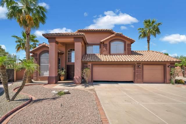 6428 E Presidio Street, Mesa, AZ 85215 (MLS #6233389) :: Lucido Agency