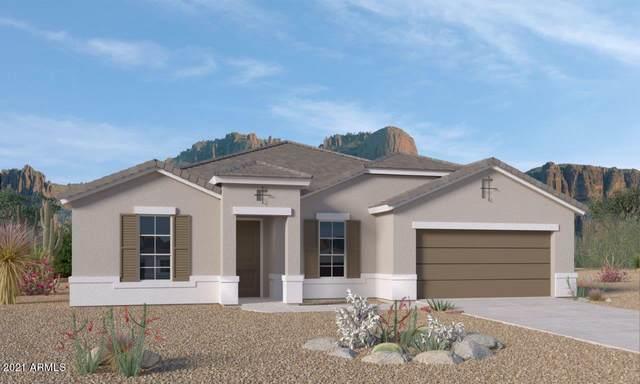 44563 W Palo Amarillo Road, Maricopa, AZ 85138 (MLS #6233398) :: Dijkstra & Co.