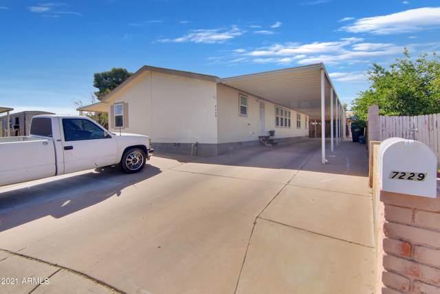 7229 S 43 Way, Phoenix, AZ 85042 (MLS #6233401) :: Zolin Group