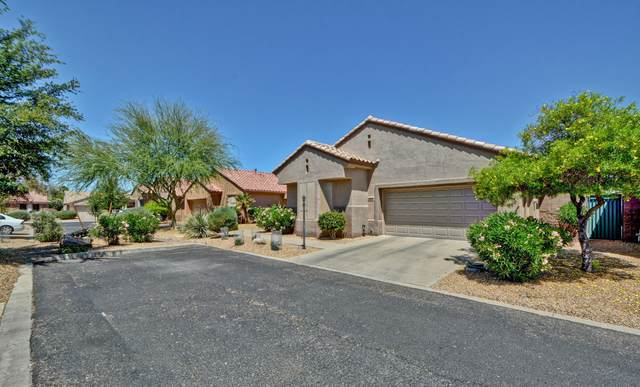 20014 N Siesta Rock Drive, Surprise, AZ 85374 (MLS #6233442) :: Hurtado Homes Group