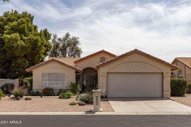 10447 E Hercules Drive, Chandler, AZ 85248 (MLS #6233480) :: Zolin Group