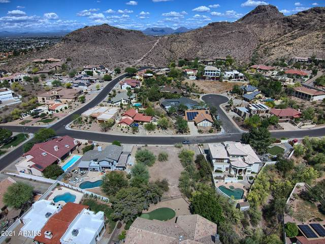 15238 N 11TH Street, Phoenix, AZ 85022 (MLS #6233497) :: Arizona 1 Real Estate Team