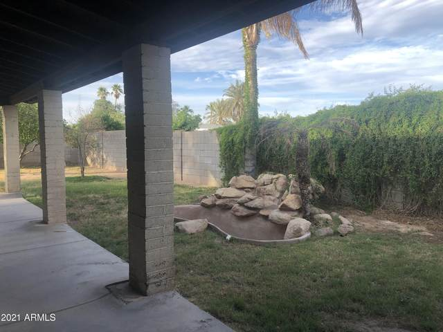 3808 W Potter Drive, Glendale, AZ 85308 (MLS #6233527) :: The Property Partners at eXp Realty