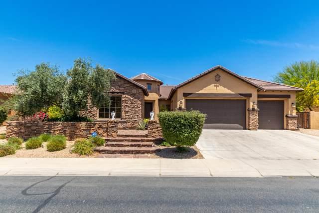 2533 N 140TH Drive, Goodyear, AZ 85395 (MLS #6233546) :: Lucido Agency