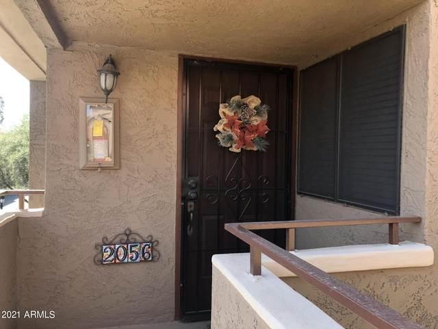 5122 E Shea Boulevard #2056, Scottsdale, AZ 85254 (MLS #6233552) :: Lucido Agency
