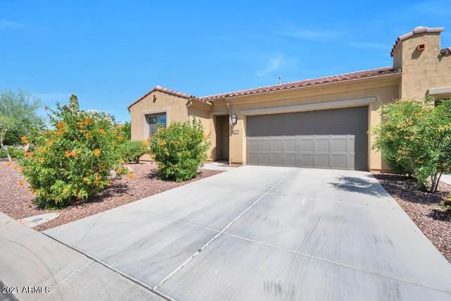 16374 W Amelia Drive, Goodyear, AZ 85395 (MLS #6233559) :: D & R Realty LLC