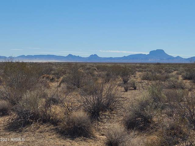 8300 S 359 Avenue, Tonopah, AZ 85354 (MLS #6233563) :: The Ethridge Team